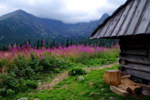 mountains-2137893_1280